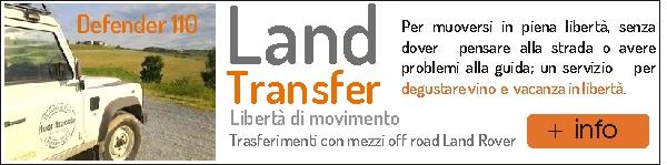 ICONA LAND TRANSFER