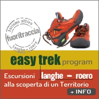 IC EASY TREK