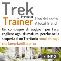 IC TREK TRAINER 1